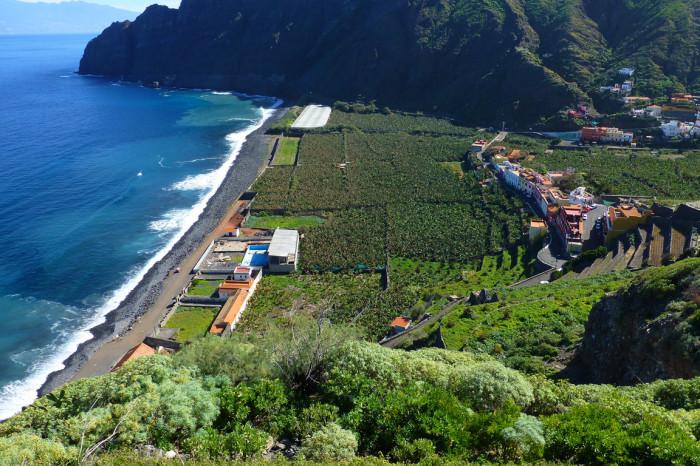 A coastal town with banana plantations