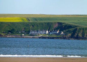 View across Lunan Bay to Ethie Haven (Taken by Jim)